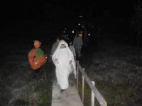 339-halloween